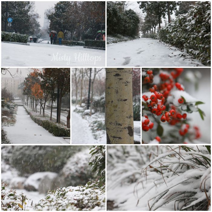 winter, snow, photography, collage