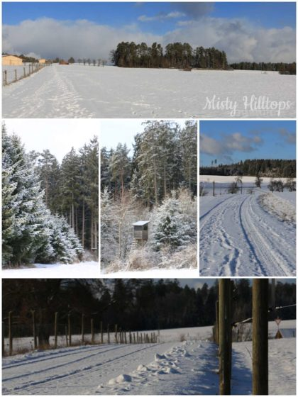 winter, snow, Schnee